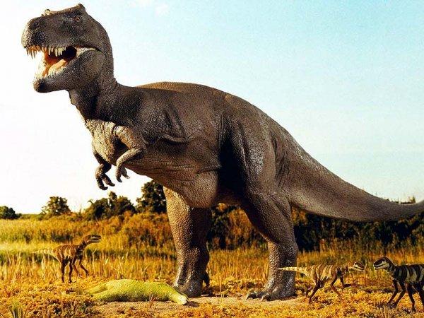Ученые нашли артрит у динозавра-утконоса, жившего 70 млн лет назад