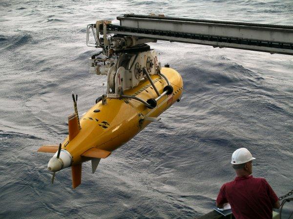 На Тихом океане для учета морских биологических ресурсов используют подводные роботы