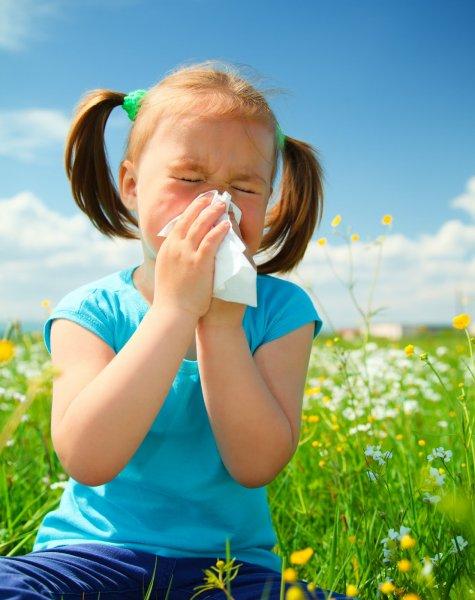 Ученые: Сезонная аллергия разрушает центральная нервная система