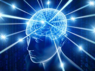 Ученые нашли центр интуиции в мозге человека