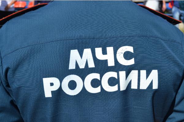 Сотрудники МЧС ликвидировали на Ямале вспышку сибирской язвы
