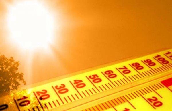 Ученые рассказали об экстремальных температурах в нынешнем году