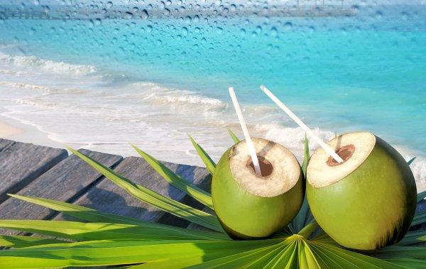 Ученые: Кокосовая вода обладает целебными свойствами