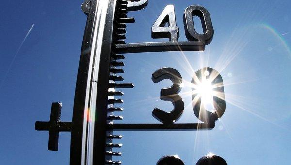 В Самаре в выходные дни будет рекордно жаркая погода