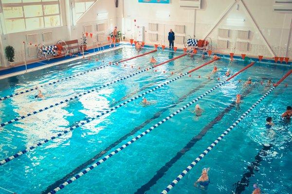Учёные выяснили, что привычка мочиться в бассейне вызывает астму