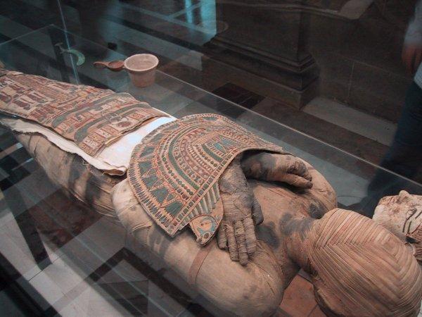 Ученые «воскресили» голову мумии с помощью 3D-сканера и объемной печати