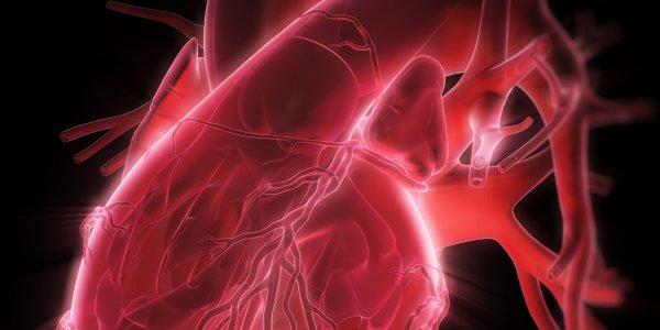 Ученые: Инъекционные наркотики продуцируют сердечные заболевания
