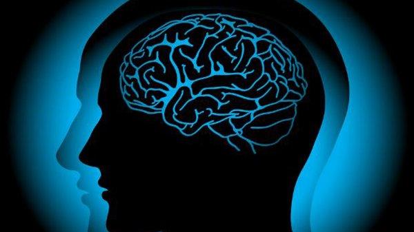 Ученые: Во время сна мозг человека распределяет информацию