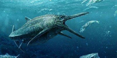 В Шотландии показали морского хищника Юрского периода