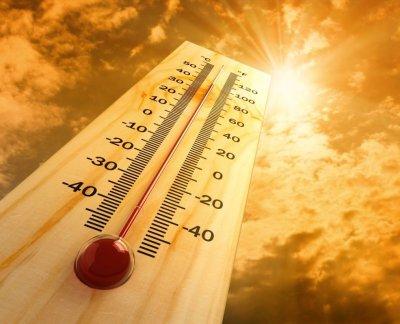 Лето 2016 года признали самым жарким в Северном полушарии