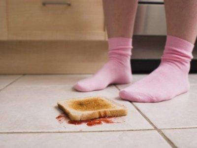 Ученые опровергли «правило пяти секунд» для упавшей еды
