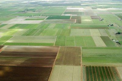 В Хабаровском крае более 100 жителей подали заявки на бесплатные гектары
