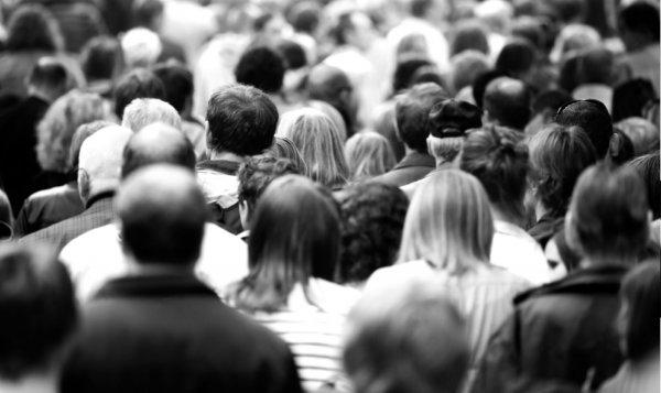 Ученые доказали подверженность людей стадным инстинктам