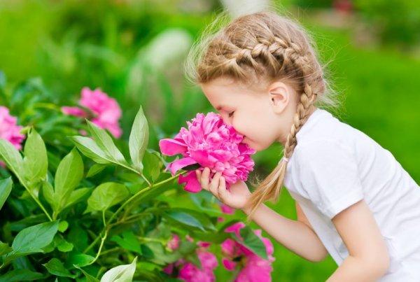 Ученые: Запахи помогают школьникам в успеваемости на уроках
