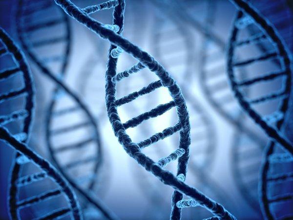 Ученые узнали, сколько лет можно прожить с онкологией