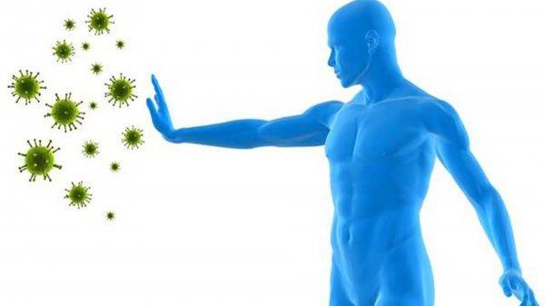 Ученые рекомендуют укреплять иммунитет ради предотвращения рака