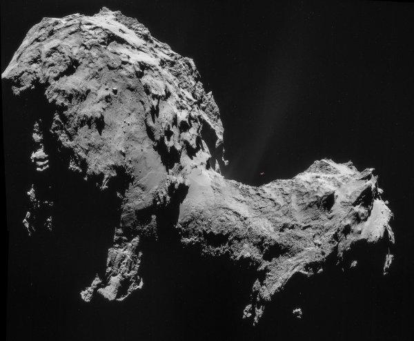 На комете Чурюмова-Герасименко обнаружили «морского конька» и «медузу» возрастом в миллиарды лет