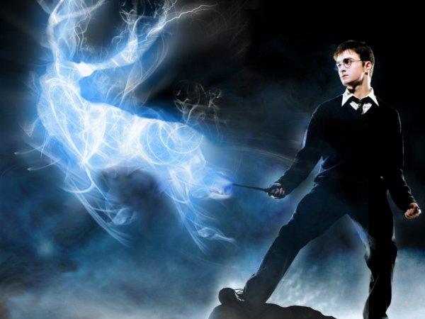 Таинственная публикация о Гарри Поттере заинтриговала пользователей