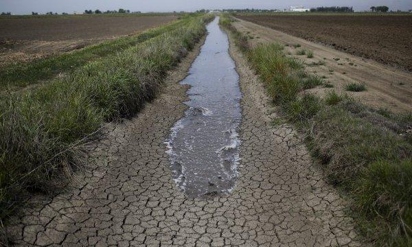 Ученые создали программу для решения проблемы дефицита воды в мире