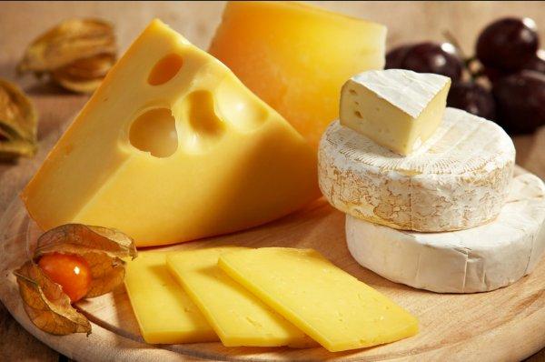 Ученые выяснили, чем сыр полезен для здоровья человека