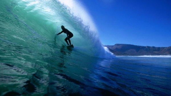 В Австралии сёрфер столкнулся с дельфином на гребне волны