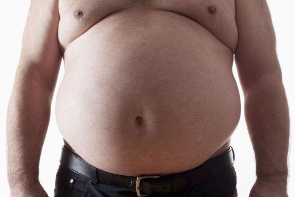 Ученые: Кишечные бактерии являются главной причиной ожирения