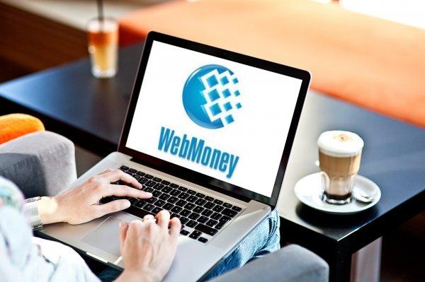 WebMoney улучшила сервис защищённых видеозвонков