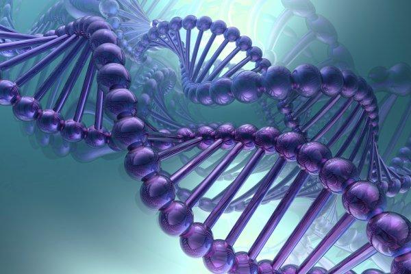 Американские биологи подтвердили альтернативную теорию возникновения жизни