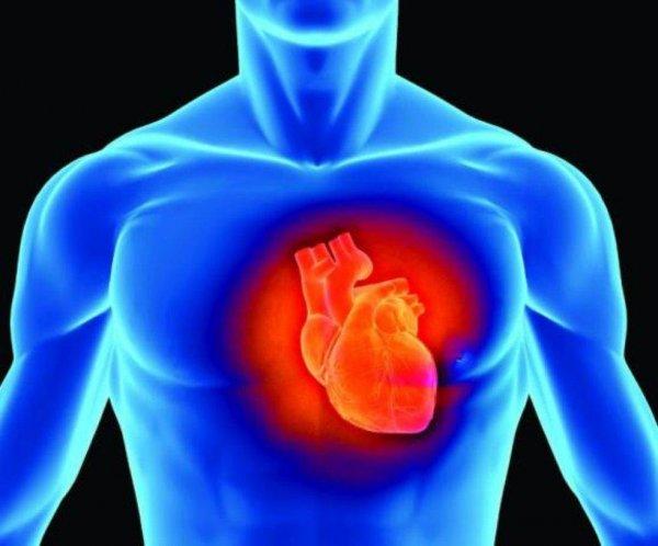 Ученые: 80% людей имеют рано состарившиеся сердца