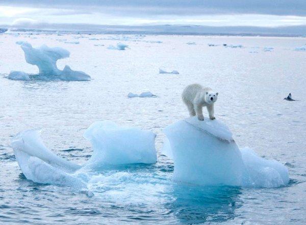 Ученые рассказали, что ждет человечество, если глобальное потепление не прекратится