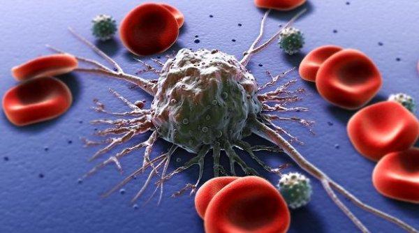 Ученые: Раковые клетки могут «обманывать» человеческий организм