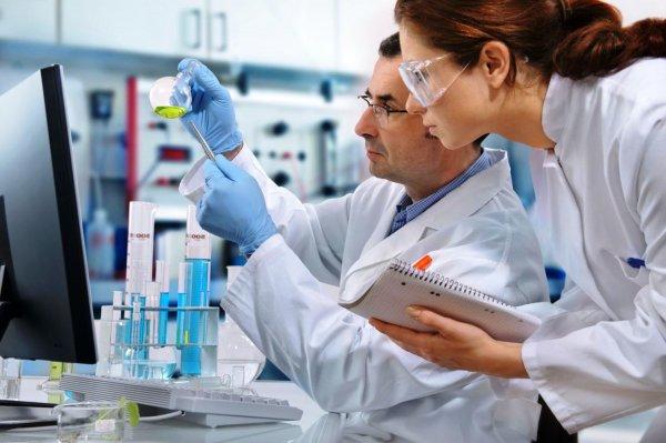 Алтайские медики создадут препарат против вируса клещевого энцефалита