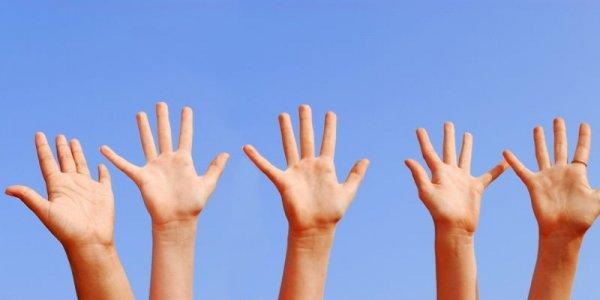 Ученые поняли, почему у человека пять пальцев на руках