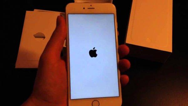 Специалисты рассказали, как отличить новый iPhone от восстановленного