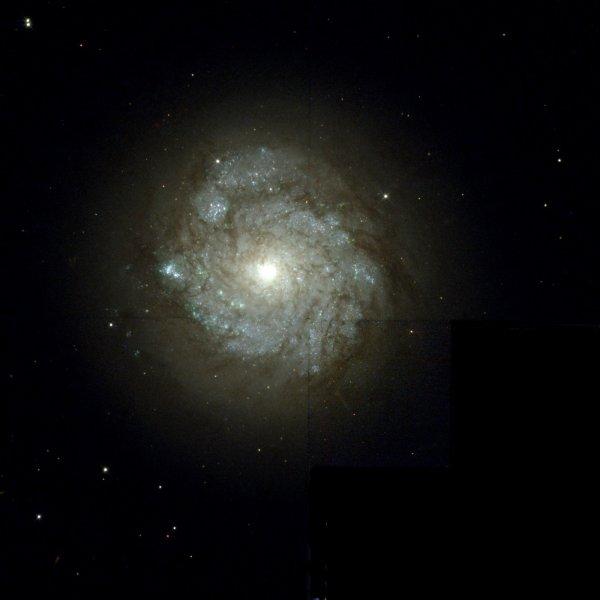 Ученые раскрыли загадку галактики в созвездии Кассиопея