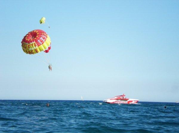 Полет на парашюте закончился приземлением на пальму
