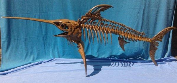 Ученые: В Австралии найдет скелет рыбы-меч возрастом 100 млн лет