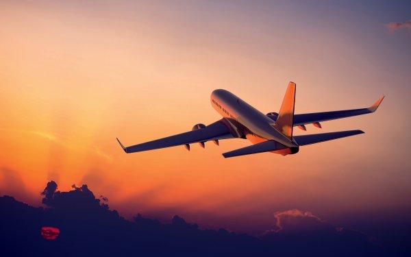 Забронировать отель и авиабилеты на время путешествия.