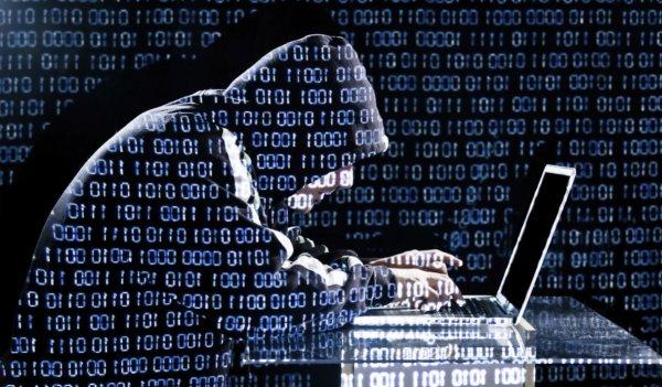 В 2016 году Сбербанк пресек попытки кибермошенничества на сумму около 9 млрд рублей
