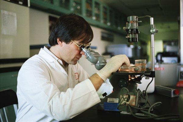 Ученые вырастили искусственные раковые опухоли