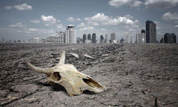 Ученые объяснили причины массового вымирания животных