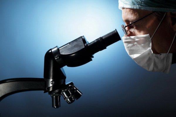 Вирус Зика уменьшает мужские яички на 90% и приводит к бесплодию