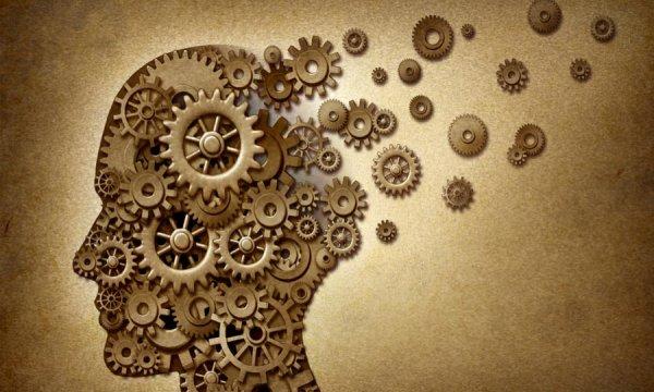Ученые: Показатели IQ никак не связаны с уровнем интелекта