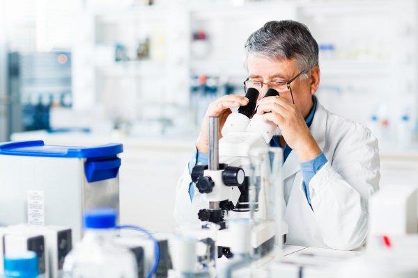 Ученые предложили создать систему геномной передачи данных
