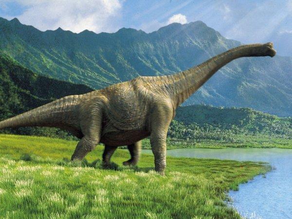 Ученые заявили, что динозавры могли появиться на 20 млн лет раньше