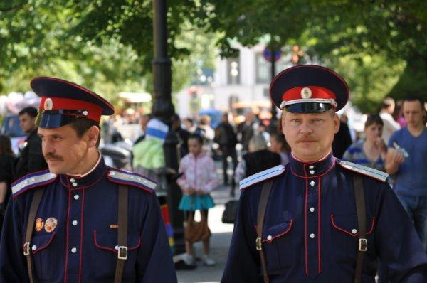 В России казаки встанут на защиту киберпространства
