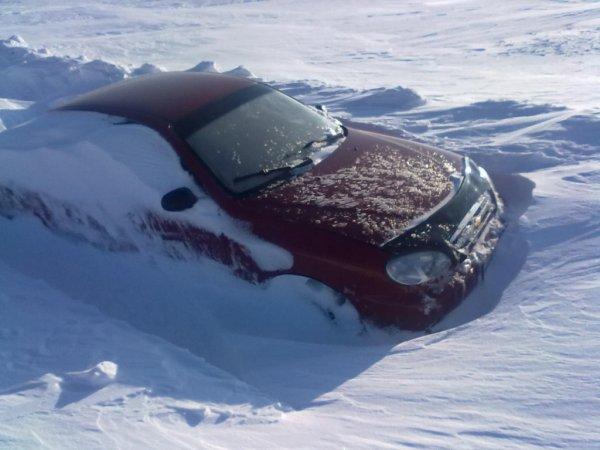 В Ставрополе мужчина стал звездой после чистки авто от снега