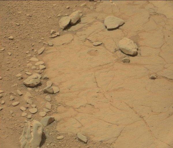Специалисты NASA обнаружили на Марсе череп динозавра