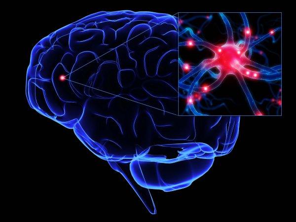 Ученые изобрели препарат для лечения инсульта