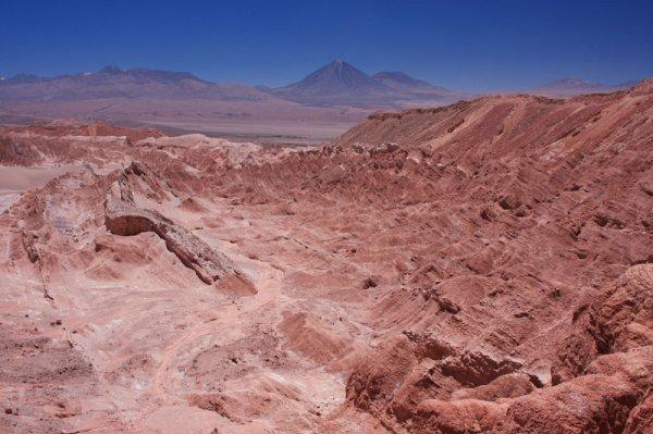 NASA еще в 2007 году могли упустить доказательства присутствия жизни на Марсе